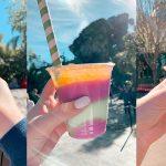Drinking Around Disney World
